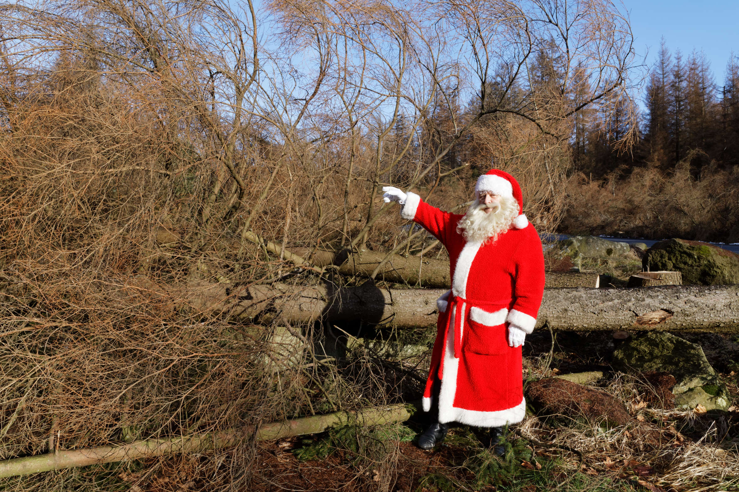 Der Weihnachtsmann im toten, schneelosen Wald